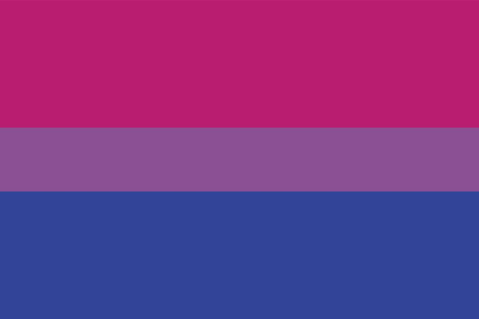 Flag from Marie Claire: https://www.marieclaire.com/culture/g32867826/lgbt-pride-flags-guide/